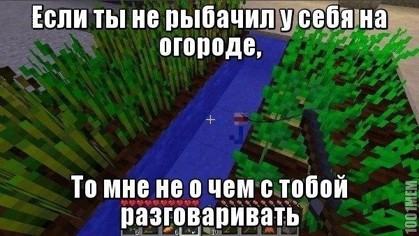 PFvOQN3CLw4.jpg